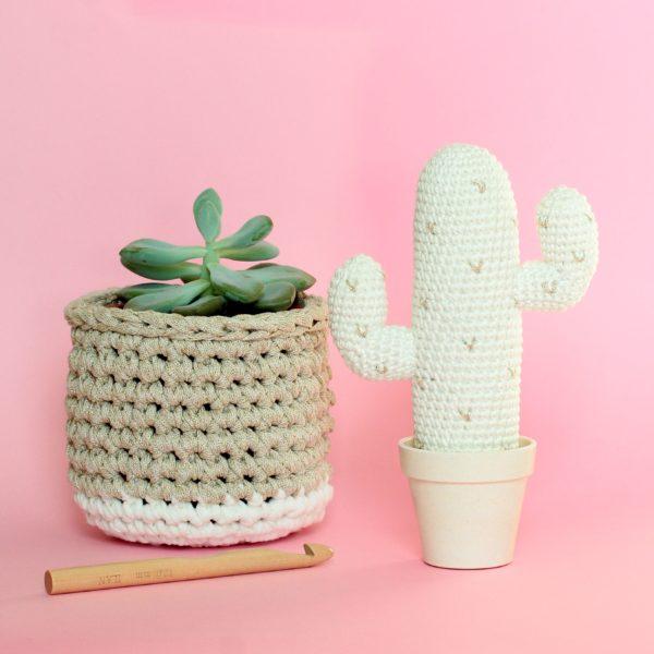 Cactus mexicain au crochet