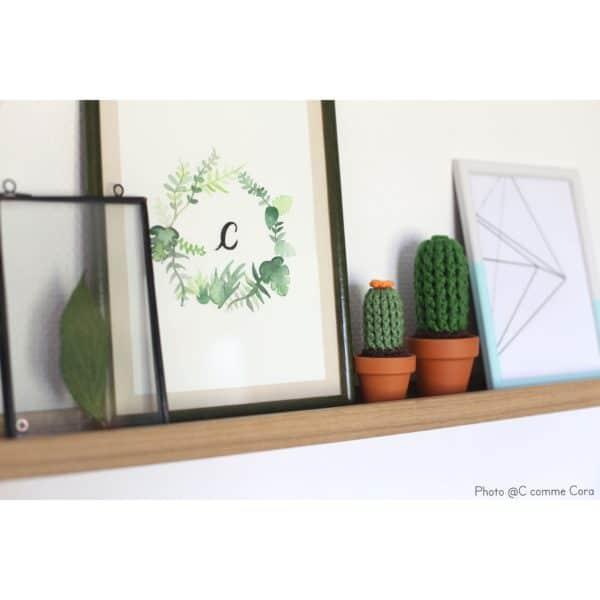 Cactus au crochet ambiance