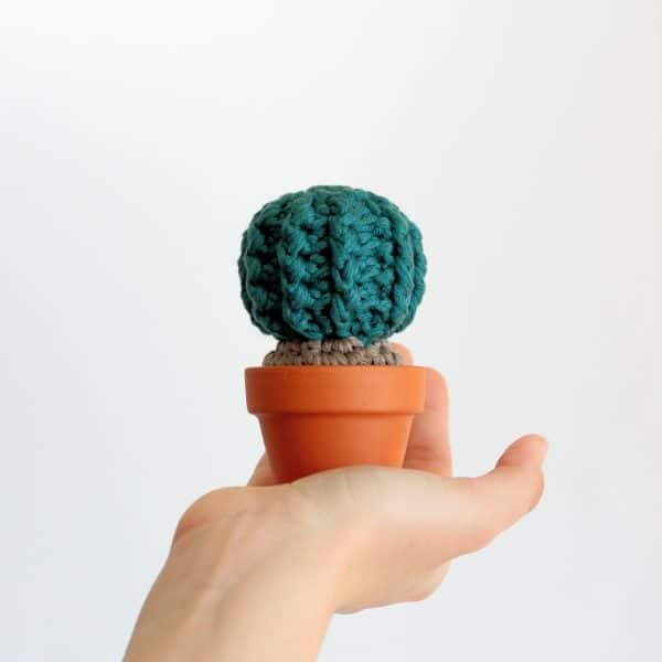 Cactus en laine
