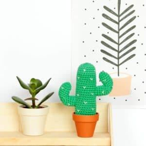 amigurumi cactus du désert