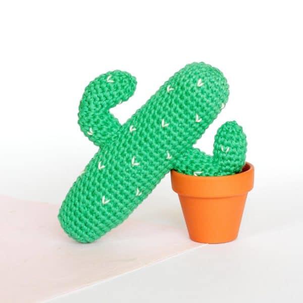cactus du désert au crochet